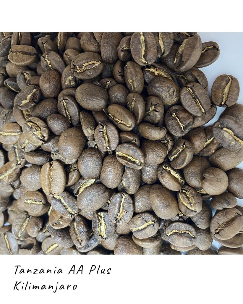 Свежеобжаренный кофе в зернах Танзания Килиманджаро АА+