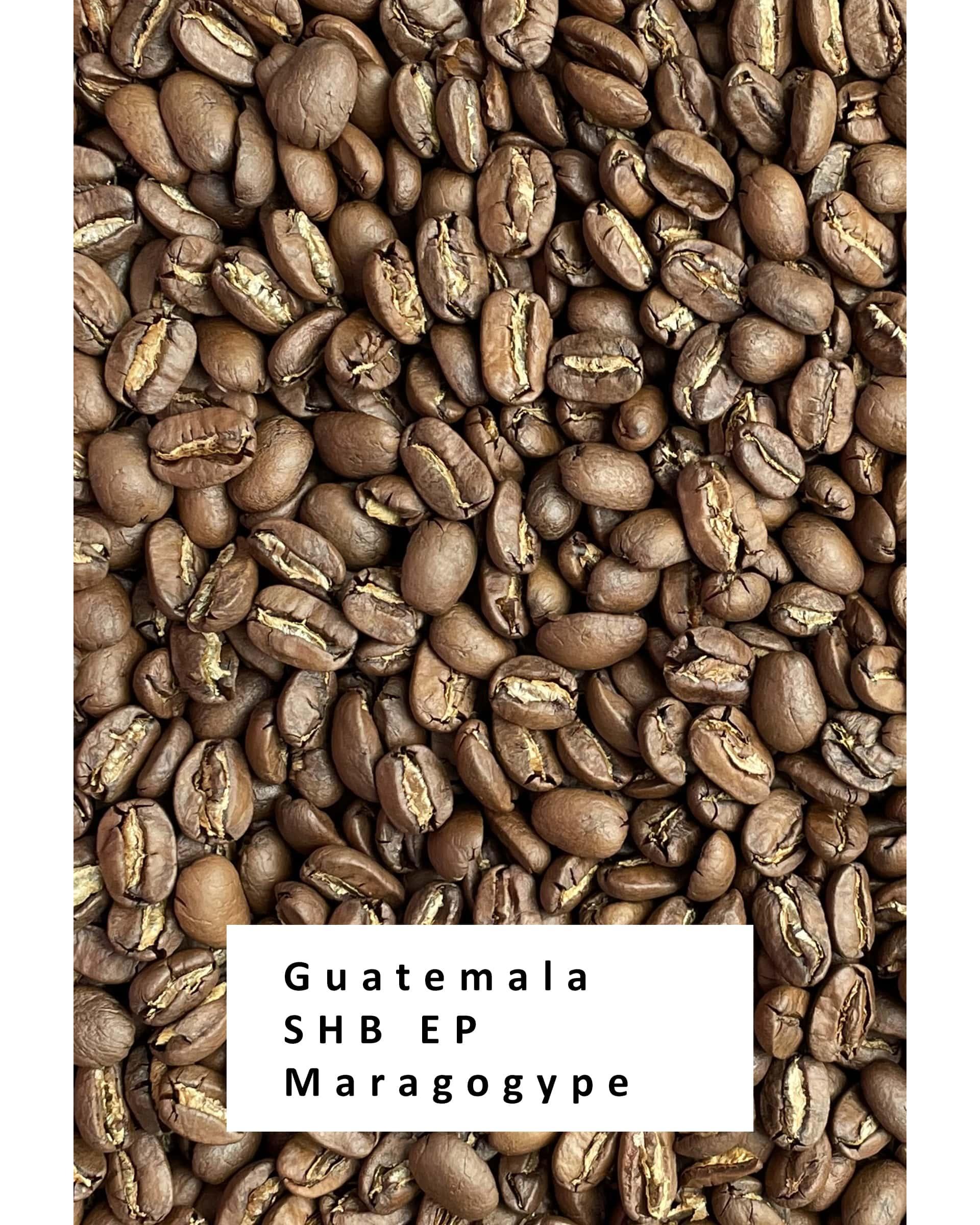 Свежеобжаренный кофе в зернах Гватемала Марагоджип
